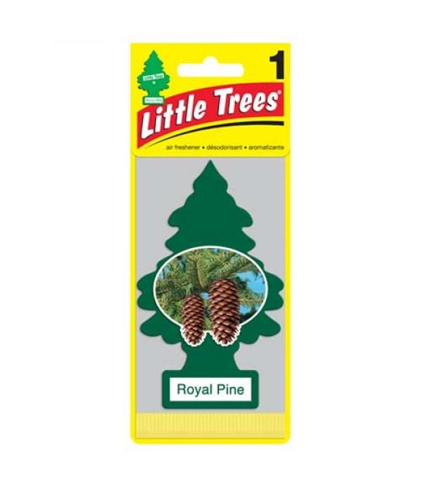 LITTLE TREE  ROYAL PINE 24 PACK